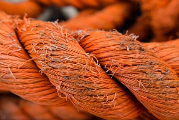 December 8: Rahab - image of orange rope