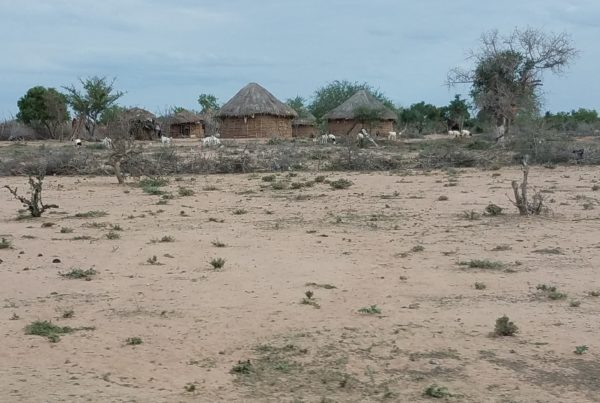 A cluster of thatch-roofed huts sit at the far edge of a sandy stretch of ground in rural Kenya