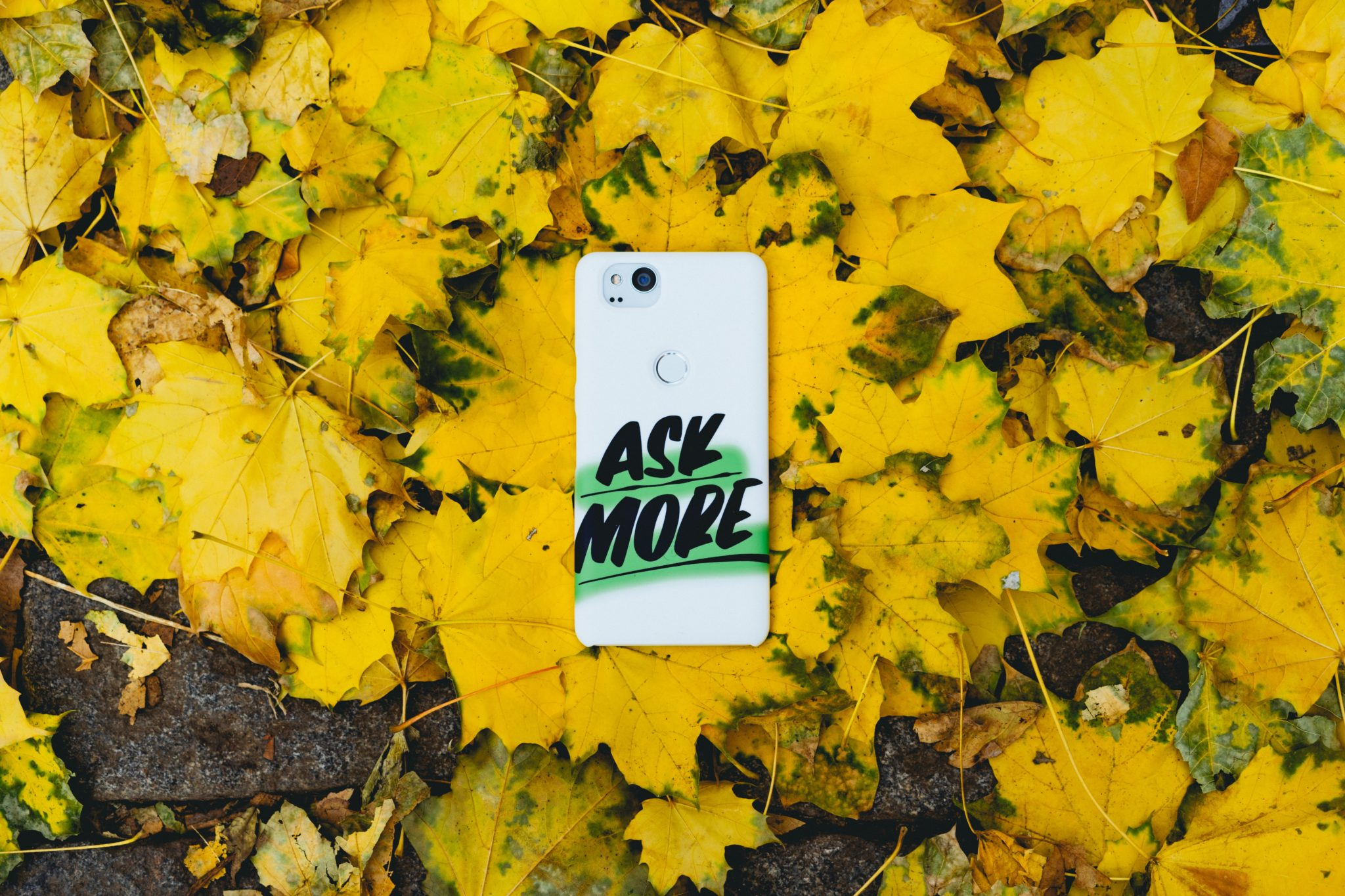 "phone with ""ask more"" sticker on it, laying in pile of yellow leaves"