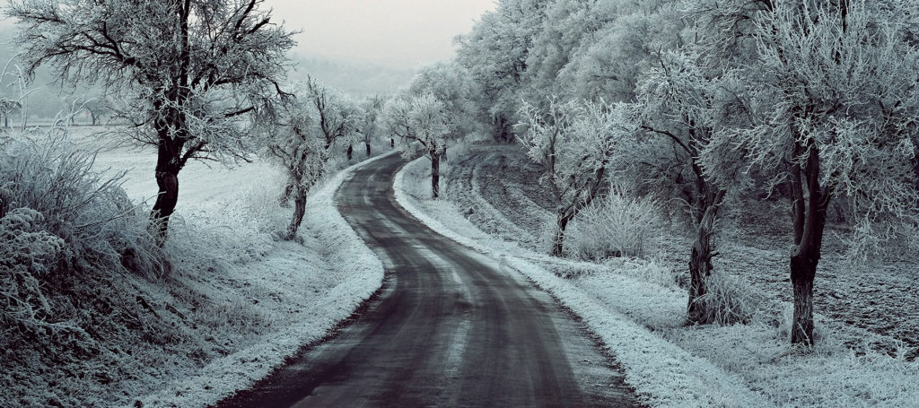 curving road lined with snow covered trees under pink sky