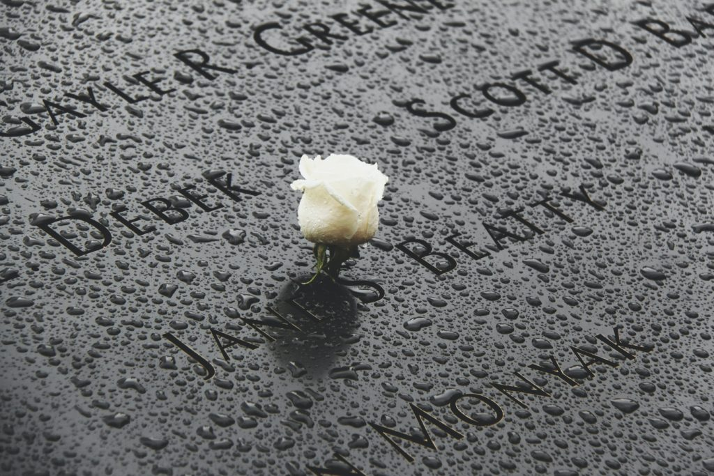 photo of half bloomed white rose flower laid on the September 11 memorial