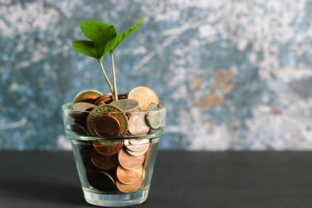 green plant in clear glass vase filled with coins