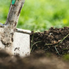A metal shovel digs into dirt.