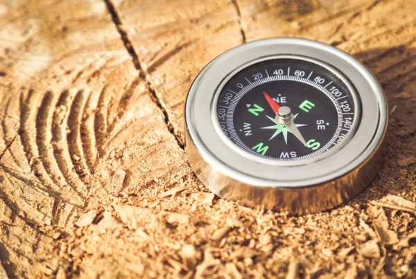 A metallic compass atop a rugged tree stump points a way forward.