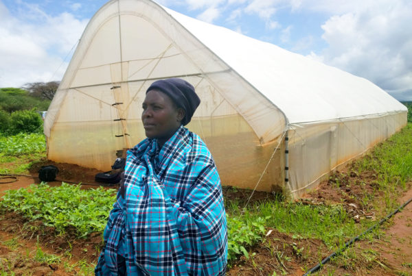 A Maasai tribe member in a bright blue plaid cloak looks ahead. A white canvas greenhouse and fields are in the background.