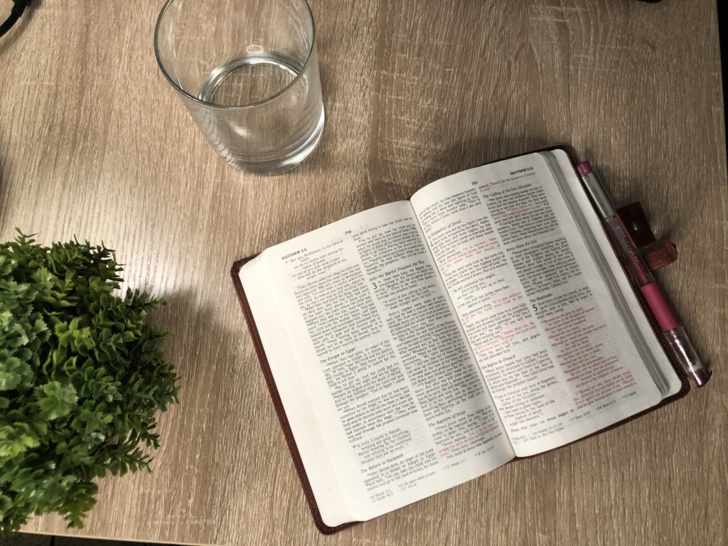 Bible open to the Gospel of Matthew on a table with a plant and glass