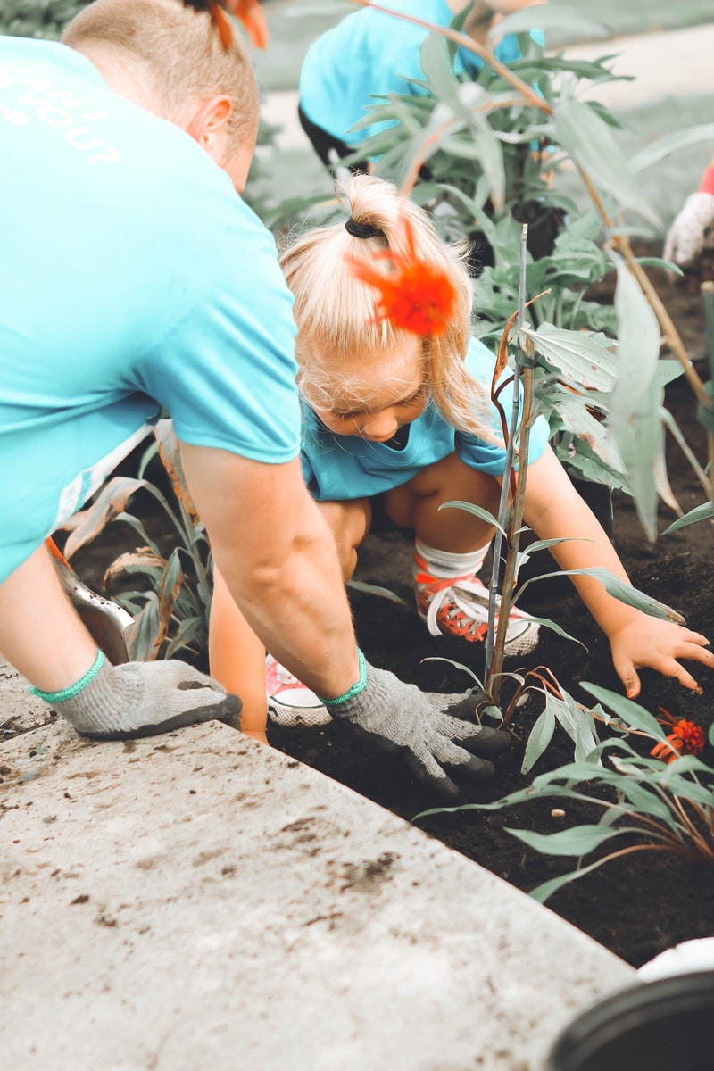 girl in blue top planting a garden with her Dad
